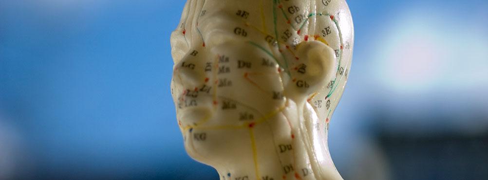 Akupunktur A-Kurs arche medica
