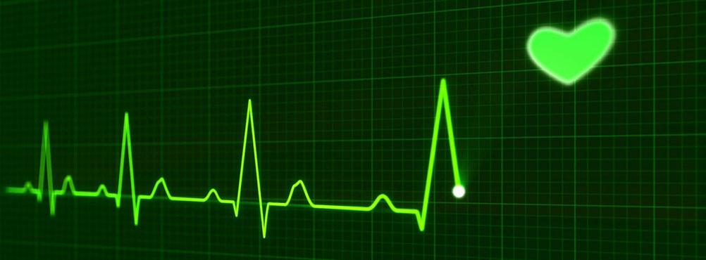Auswertung Heilpraktikerprüfung arche medica